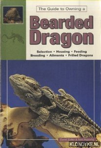 The guide to owning a Bearded Dragon